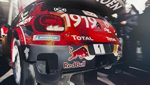 WRC-Glossary-11_308x1761 (1)