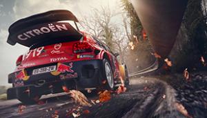 WRC-Glossary-7_308x1761