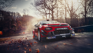 WRC-Glossary-9_308x1761